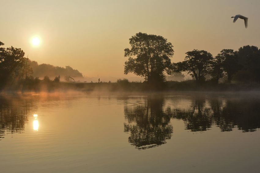 Beauty In Nature Outdoors Reflection River Thames Bank Sun Rises For A New Day Tranquil Scene Water Waterfront