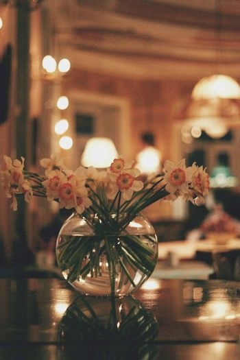 Vintage romance Romance Vintage Vintage Photo Vintage Style Nature Morte Softness Soft Focus Soft Light Romantic Romantic❤ Romantic Place Retro Retro Styled Retro Style Candelabra Flowers Collection  Flowers Narcissus Cafe HUAWEI Photo Award: After Dark Illuminated Celebration Close-up Focus Fairy Lights Decoration