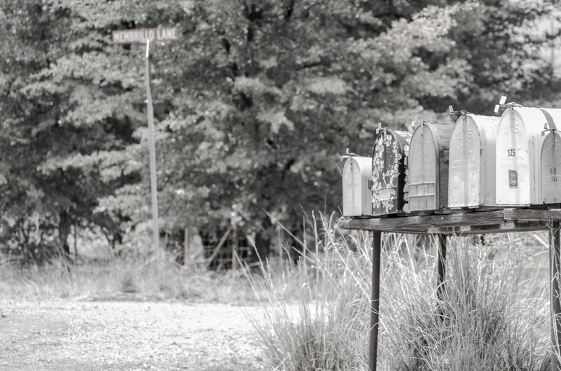 Black & White Countryside Day Mailboxes Nature No People Outdoors Street Sign Tree