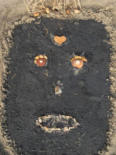 Long Goodbye Sand Portrait Black Stones Shells Egypt égypte