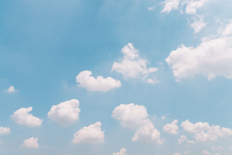 Blue Sky with a Bunch of Fluffy Clouds Backgrounds Beauty In Nature Blue Cloud - Sky Everyday Life Happiness Hope Nature Outdoors Scenics Sky Sky Only Space For Text Sunny Day The Natural World Tranquil Scene Tranquility White Clouds