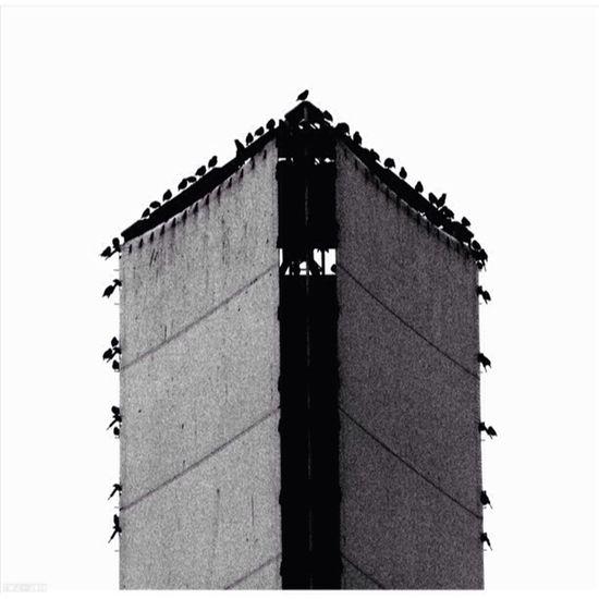 Tower Birds Brucegreysimcoe Black And White