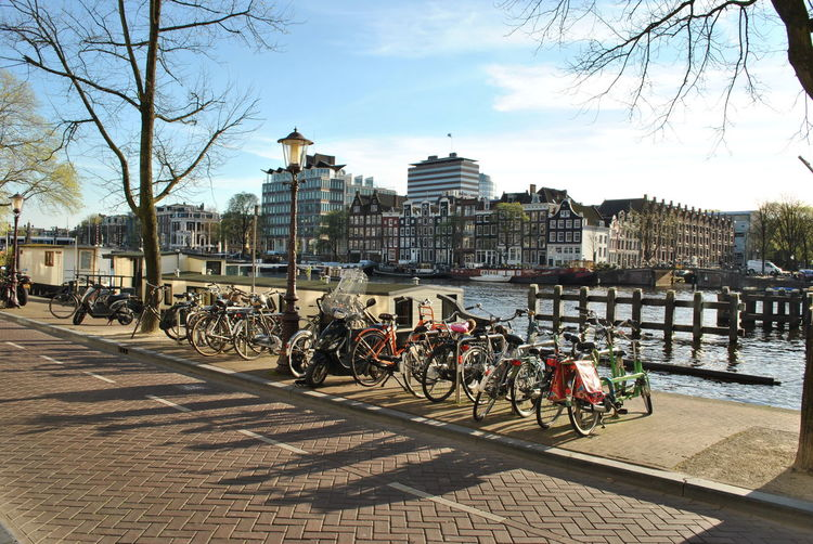 Amsterdam by bikes Amsterdam Bicycle City City Life Daily Life Energy Shadows Street Sunshine