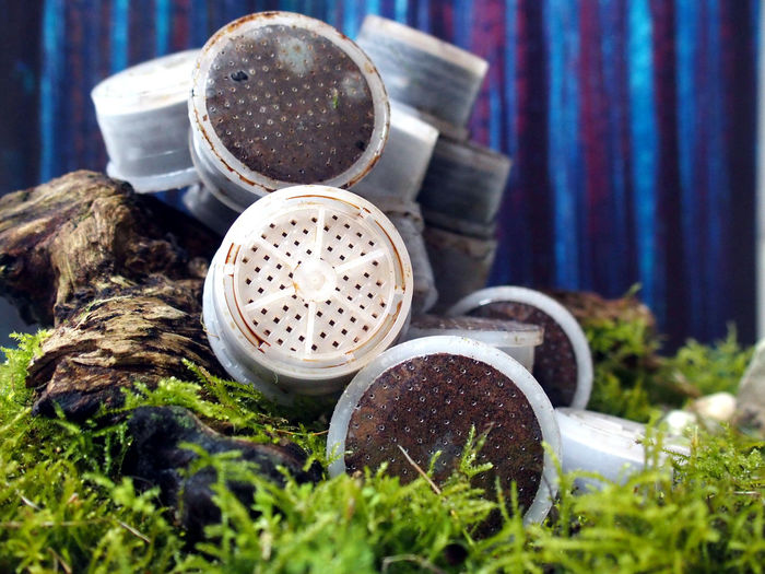 Close-up of abandoned coffee capsules on grass
