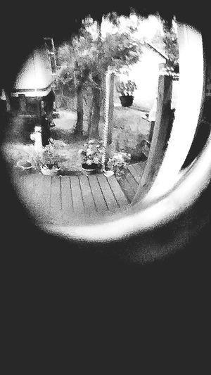Bnw_friday_eyeemchallenge Through The Window Frontporch Taking Photos Check This Out Looking Through Good Morning