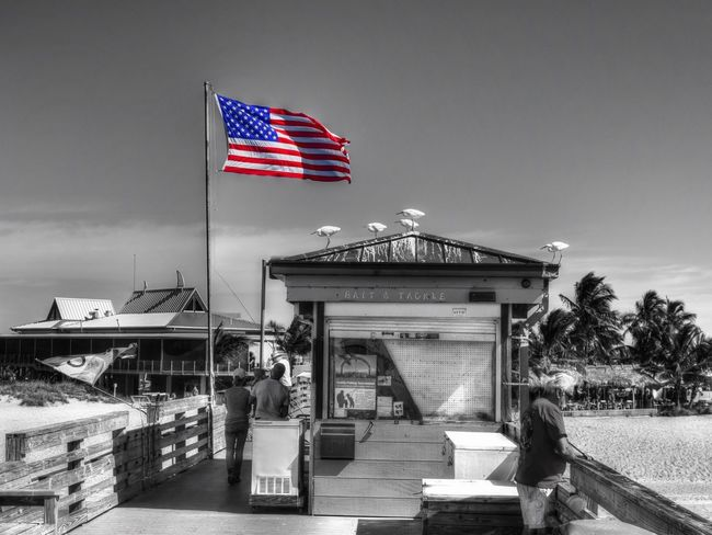 Veteransday Tadaa Community Colorsplash Beach Venice, FL