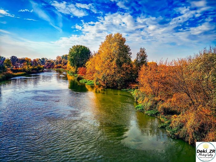 The river Bega Deki_ZR Creative Relax Enjoy Colors Ecka Srbija Begej Landscapehunter Internationalphotography Photographer Water Pixelated Tree Sky Cloud - Sky EyeEmNewHere