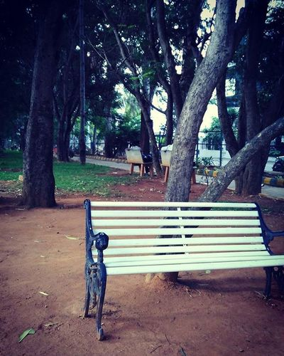 Instaweekend Park Ifeellonley Bengaluru Instadaily Instalike ThroughMyLens Throughmyeyes