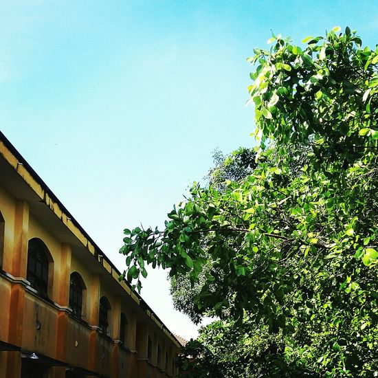 My School~~ First Eyeem Photo