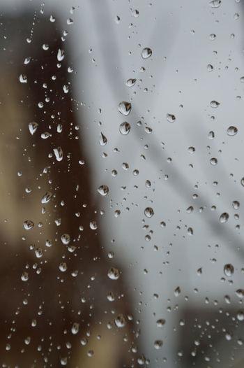 #cloudy #glasses  #mac #MacroShot #rain  #rainy Day#street#car#relax #Switzerland #trees #Window #Winter