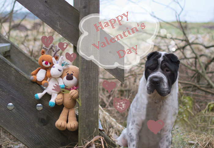 Happy valentin's day! Pets Dog Valentine's Day  Valentinstag Nature Beauty In Nature Malen Draw Drawing Love Liebe Domestic Animals Animal No People One Animal Animal Themes Outdoors Hundefotografie Shar Pei Dog Photography Hund