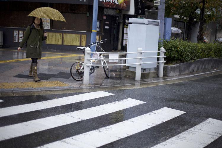 Woman on zebra crossing in city