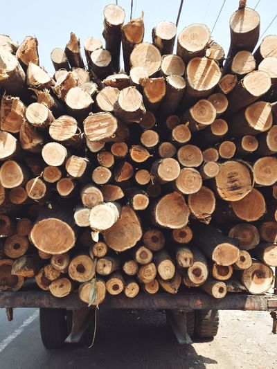Stack Log Timber Lumber Industry Deforestation Abundance Woodpile Large Group Of Objects Environmental Issues Heap Forestry Industry Wood - Material Pile Fossil Fuel Fuel And Power Generation No People Day Outdoors The Week On EyeEm