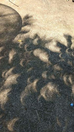 High angle view of shadow on ground