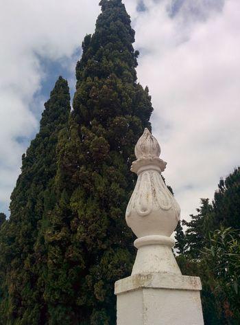 Cloud - Sky Day No People Outdoors Sky Statue Tree