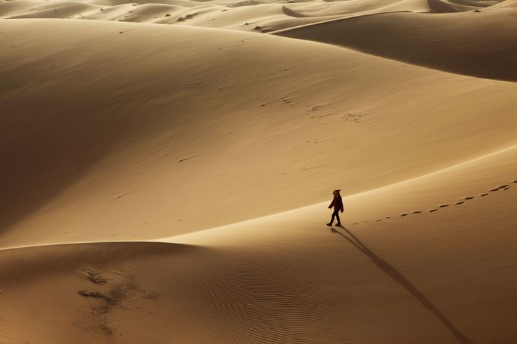 High angle view of person walking on sand dune