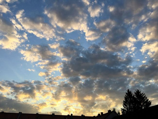 Abendstimmung, Sonnenuntergang, Farbspektakel, Himmel mit Wolken und Sonne, Relax End Of The Day Wheather Cloud - Sky Sky Beauty In Nature Low Angle View Scenics - Nature Tree Tranquil Scene Tranquility Sunset Cloudscape Nature Meteorology Orange Color Outdoors