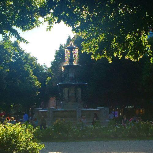 Fountain Park Weissenburger Platz Summer Sun Neighborhood Map