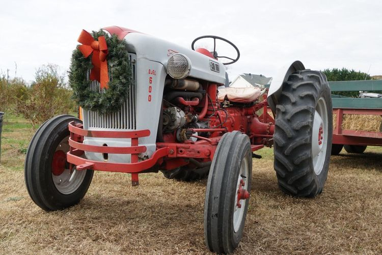 Christmas Transportation Land Vehicle Field Mode Of Transport Day Tree Stationary No People Outdoors Agriculture Red Combine Harvester Sky Tractor Farm Wreath Tree Christmas