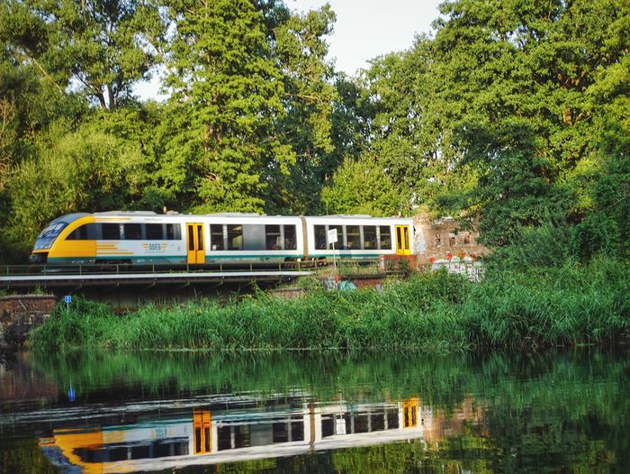 Train by river against trees