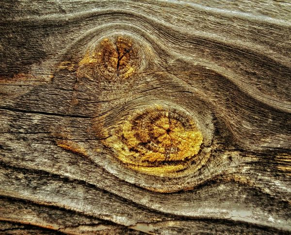 In the heart of the knot. Textures And Surfaces Wood Texture Wood Decay Detail Showing Imperfection Close Up Weathered Wood Decay Wood Weathered Abstract Nature Textures Texture Knot Patterns In Nature Wood Grain Wood Grain Texture Wood Knot Patterns In Wood Lichen Maximum Closeness Paint The Town Yellow