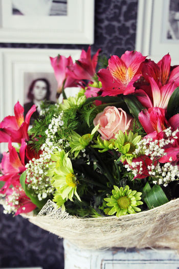 Close-up of flowers blooming in vase