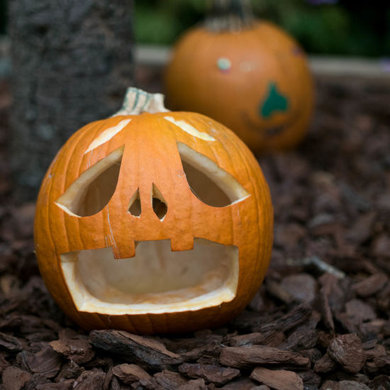 Close-up of pumpkin on stone wall during halloween