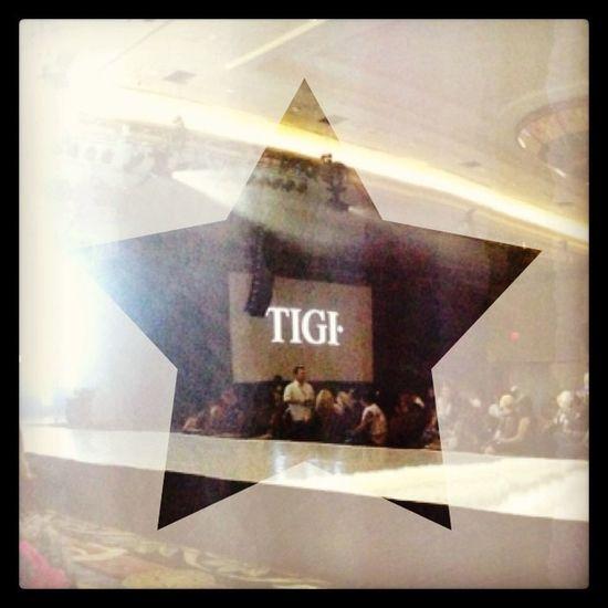 Tigi Tigilinea Tigiworldrelease Hairshow