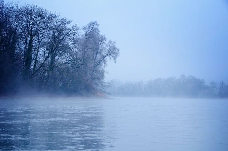 Bare Tree Blue Capturing Freedom Cold Cold Days Cold Temperature Eyem Nature Lover Fog Getting Away From It All Getting Inspired Mistery Nature Nature_collection On A Boat Outdoors Pastel Protecting Where We Play River Shades Of Blue Spirit Tranquil Scene Tranquility Water Water Reflections The Great Outdoors - 2016 EyeEm Awards