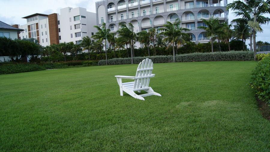 Chair Field