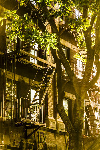 Apartment Brooklyn City City Life Dawn Fireescape Green Color Mypointofview New York NYC Residential Building Stairs Sunset
