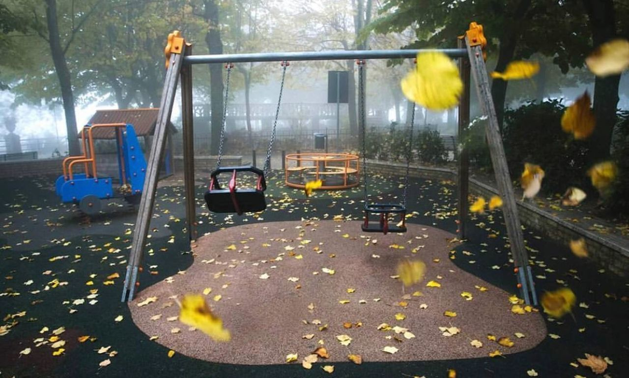 plant, nature, tree, playground, outdoors, motion, day, water, no people, flower, yellow, food and drink, park, autumn, swing, absence, park - man made space, flowering plant, mode of transportation, outdoor play equipment