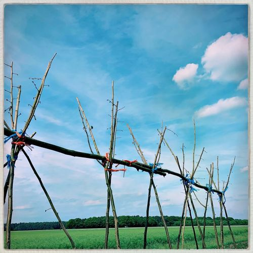 Cloud - Sky Fence Sky Barrier Boundary Protection Safety No People Nature Day Plant Land Field The Mobile Photographer - 2019 EyeEm Awards The Mobile Photographer - 2019 EyeEm Awards