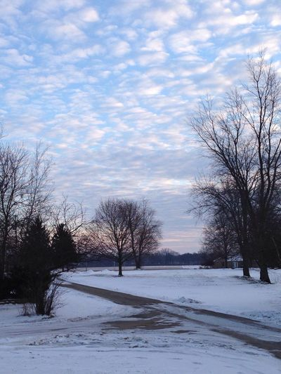 A look down my driveway. January 2015 My Journey  Snow Nature Beautiful Nature EyeEm Nature Lover Connected With Nature Tree_collection  Sky And Clouds Enjoying Life
