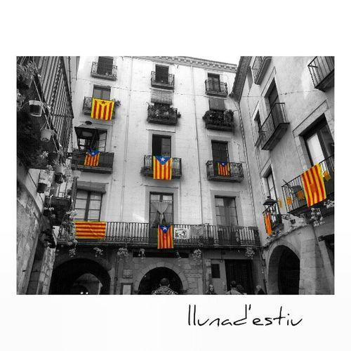 Molt bona nit tingueu Amigers. Igersgirona Incostabrava Gironaemociona Gf_spain gf_daily fotosdesomni fotodeldia gf_spain gf_daily igerscatalonia ikg_photos