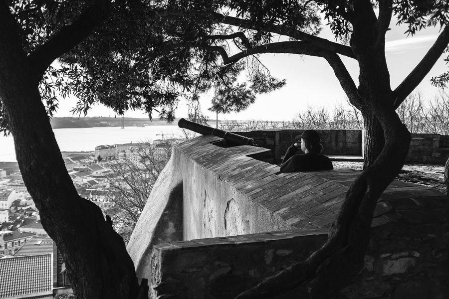 Streetphotography Streetphoto_bw Street Photography Lisbon Lisbon - Portugal Malephotographerofthemonth Tree Sky Triangle Shape Tree Trunk Branch #FREIHEITBERLIN The Street Photographer - 2018 EyeEm Awards