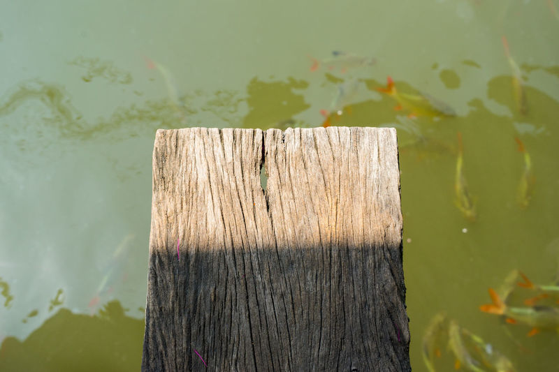 Close-up of wood against lake