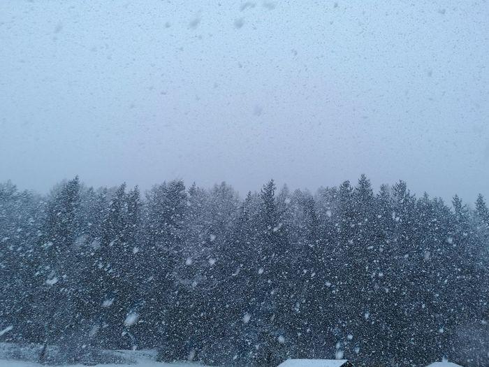 Pixelated Snow