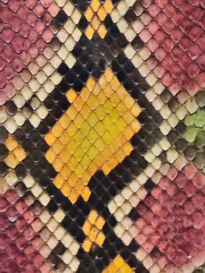 Snakeskin Reptile Coat