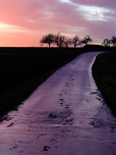 Pink Road Beauty In Nature Black Cloud - Sky Landscape Outdoors Pink Clouds At Sunset Pink Skys Reflections Scenics Sunrise Tree Silhouettes Violet Violet Clouds Wet Road Winter