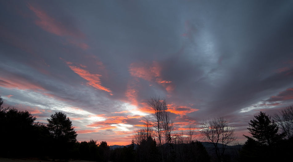 March 2016 Sunrise looking out the front door in the Adirondacks, a medley of blues, pinks and grays. Adirondack Mountains Beauty In Nature Cloud Cloud - Sky Cloudy Dramatic Sky Dusk Heavenly Idyllic Landscape Low Angle View Moody Sky Nature Optimism Orange Color Outdoors Scenics Silhouette Sky Sunrise Sunset Tranquil Scene Tranquility Tree Wide Angle Sky