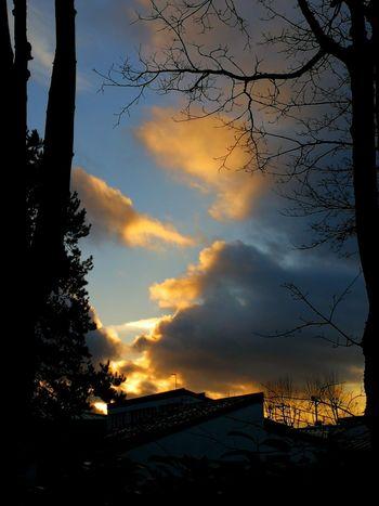 Cloud - Sky Environment Sky Sunset No People Nature