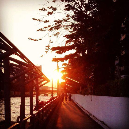 Pier Sunset Beautiful Sunset