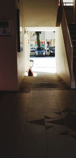 Cat Groud Floor Walkway Void Deck Carpark Architecture Built Structure Tiled Floor Hallway Entryway EyeEmNewHere