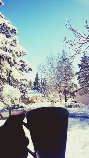 Winter Wintertime Snow ❄ Snowy Days... Hello World Mygarden Coffee Coffee Time Morning