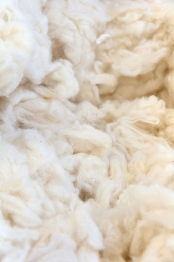 cotton wool Cotton Wool Textures And Surfaces Backgrounds Close-up Cotton Cotton Plant Day Full Frame Indoors  No People Texture Tuf Tuft White Color Wool