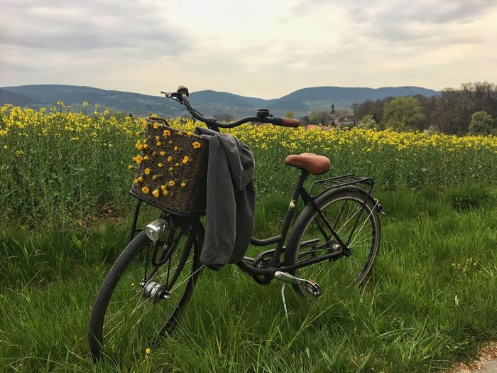 Bike with flowers in front of a yellow rapeseed field Bicycle Transportation Field Nature Grass Mode Of Transport Sky Growth Mountain No People Outdoors Day Land Vehicle Beauty In Nature Yellow Flower Pedal Bike Flowers Flowers,Plants & Garden Plants Rapeseed Rapeseed Field Rapeseed Blossom Countryside The Great Outdoors - 2017 EyeEm Awards