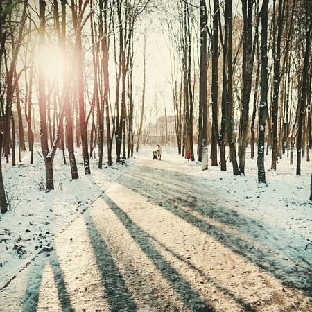 First Eyeem Photo Winter A Walk In The Park зимапришла With Grandma