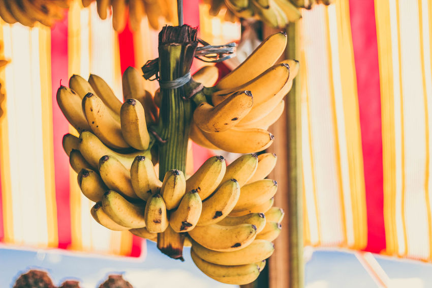 Banana Fruit Bananas Bananas And Strawberries  Bananas For Sale Bananas Overloa EyeEm Best Shots EyeEm Gallery EyeEmBestPics Fruit Of The Day I Love Banana Milk Shake Marketplace Paint The Town Yellow