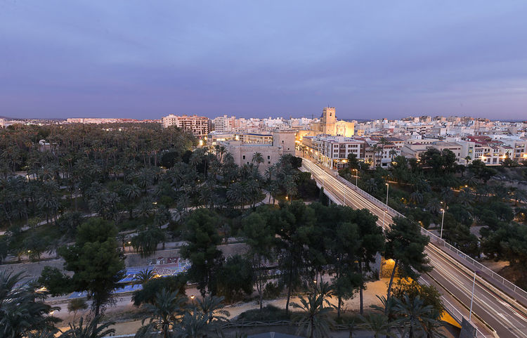 Views of Elche city at sunset in front of the palm grove. Province of Alicante in Spain. Alacant Alicante Alicante Province Spain Christmas Elche Elx SPAIN Spanish Travel Architecture Building Exterior Built Structure Chrismas Lights City Cityscape Day High Angle View Illuminated No People Outdoors Sky Travel Destinations Tree